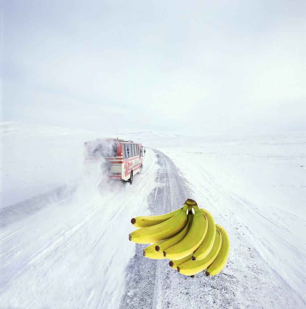 bananes only.jpg